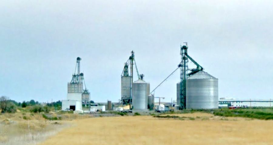 Report: Auger Cuts Off Man's Leg at Idaho Feed Plant | Powder/Bulk