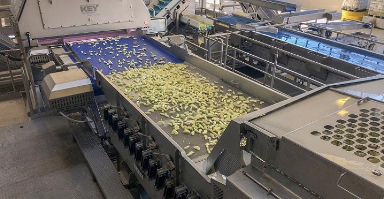 Key Technology apple sorting system