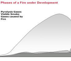 Photo 3: Fire development graph