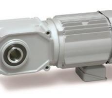 Gearmotor from Brother Gearmotors