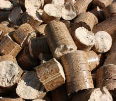 Enviva is considering plans for a new $175 million wood pellet plant in Alabama. Image courtesy of Pixabay
